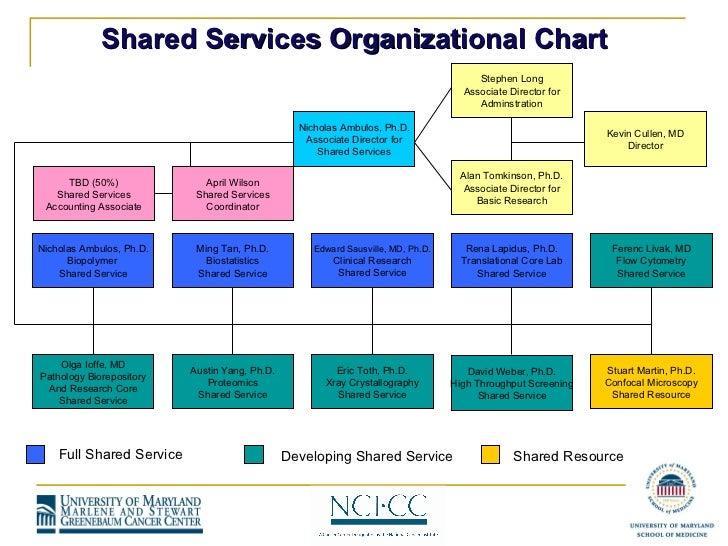 Organisation charts templates