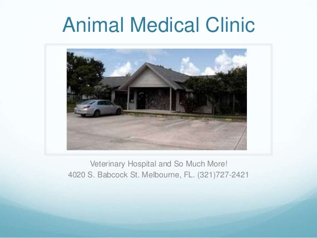 Animal Medical Clinic     Veterinary Hospital and So Much More!4020 S. Babcock St. Melbourne, FL. (321)727-2421
