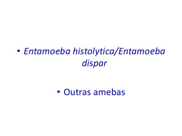 • Entamoeba histolytica/Entamoeba dispar • Outras amebas