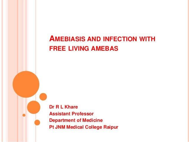 AMEBIASIS AND INFECTION WITH FREE LIVING AMEBAS  Dr R L Khare Assistant Professor Department of Medicine Pt JNM Medical Co...