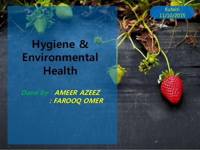 Hygiene hygiene environmental health allppt free powerpoint templates diagrams and charts kutaisi toneelgroepblik Images
