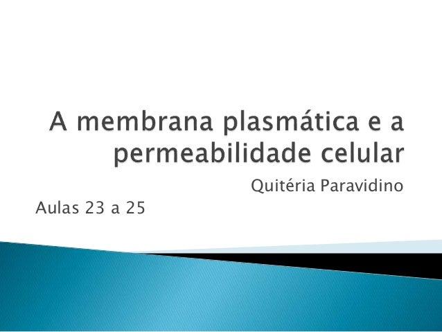 Quitéria Paravidino Aulas 23 a 25