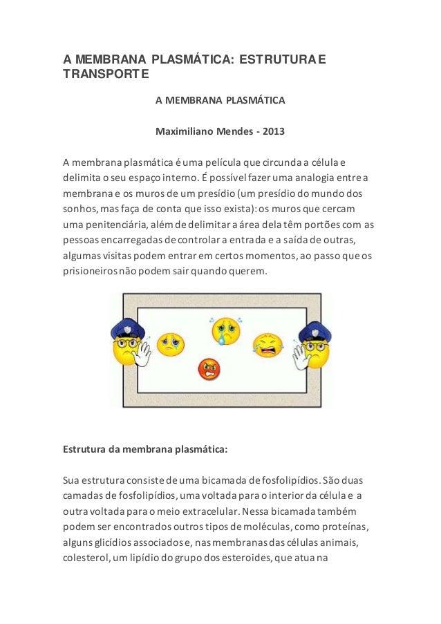A MEMBRANA PLASMÁTICA: ESTRUTURAE TRANSPORTE A MEMBRANA PLASMÁTICA Maximiliano Mendes - 2013 A membrana plasmática é uma p...