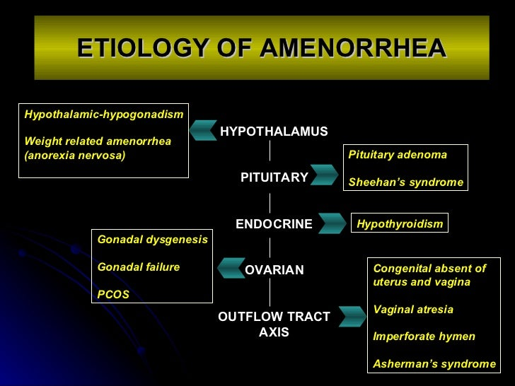 amenorrhea, Skeleton
