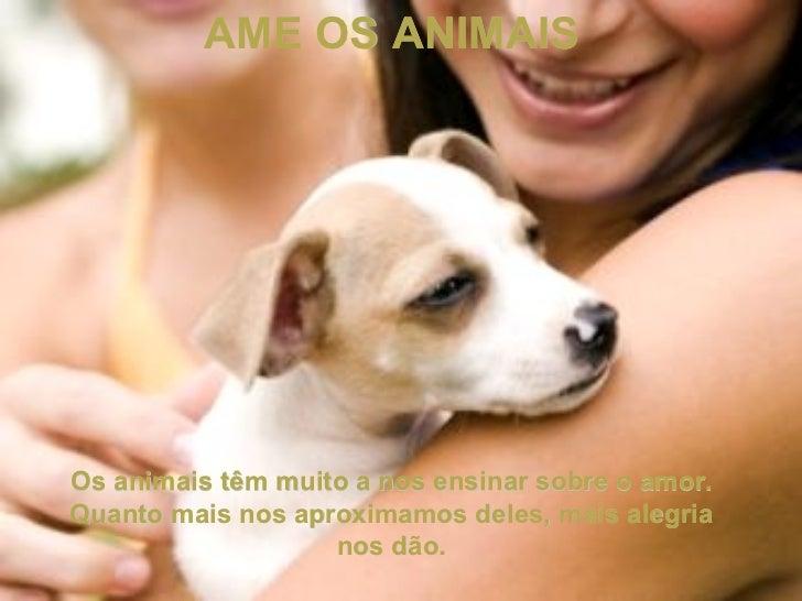 AME OS ANIMAIS Os animais têm muito a nos ensinar sobre o amor. Quanto mais nos aproximamos deles, mais alegria nos dão.