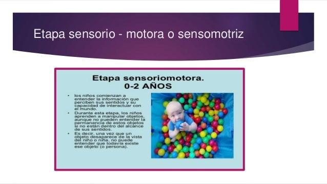 Etapa sensorio - motora o sensomotriz
