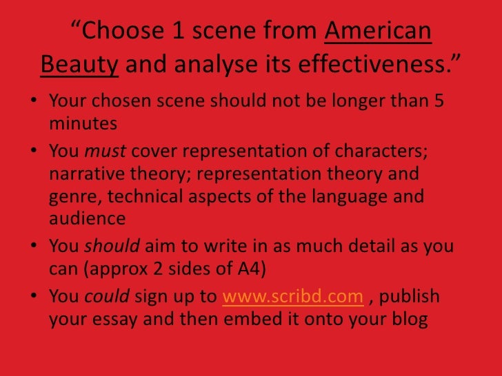 american beauty movie essays