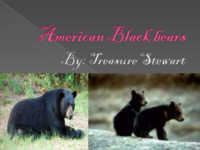  http://www.arkive.org/american-black- bear/ursus-americanus/video-00.html  http://www.arkive.org/american-black- bear/u...