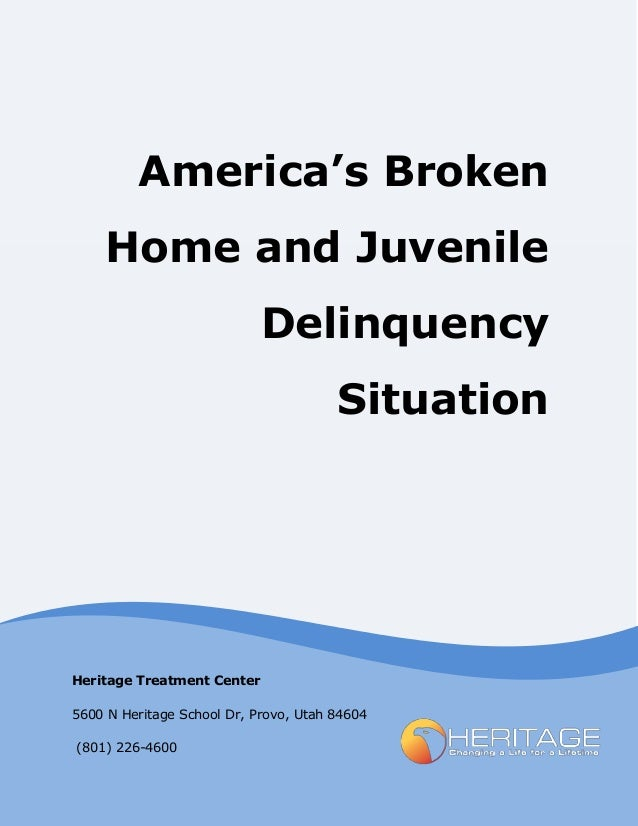 an overview of juvenile delinquency and the need for rehabilitation If a juvenile commits a crime and enters the juvenile justice system, a juvenile might be handled either formally or informally, depending on the type of offense, the background of the offender, and the availability of resources.