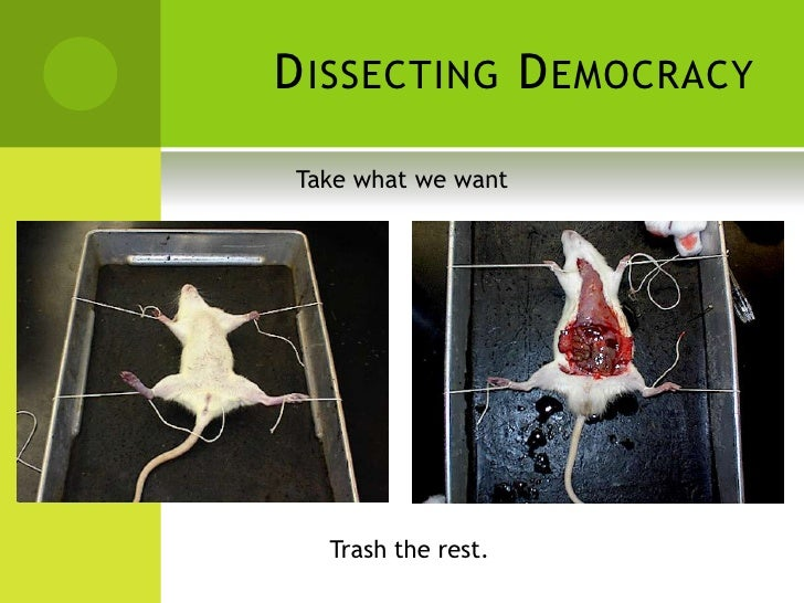 Dissecting Democracy Take What We Want Trash The Rest