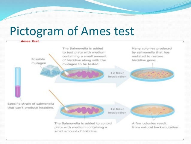 ames test Ames test definition: a method of preliminary screening for carcinogens , based on their ability to cause | meaning, pronunciation, translations and examples.