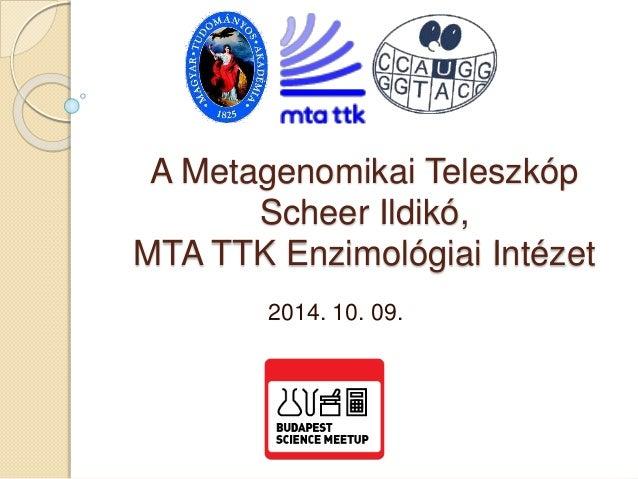 A Metagenomikai Teleszkóp  Scheer Ildikó,  MTA TTK Enzimológiai Intézet  2014. 10. 09.