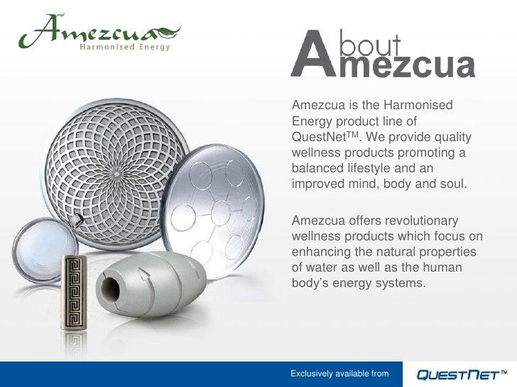 Amezcua Harmonised Energy Presentation Jan10 Slide 2