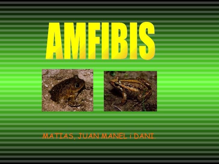 AMFIBIS MATIAS, JUAN MANEL i DANI.