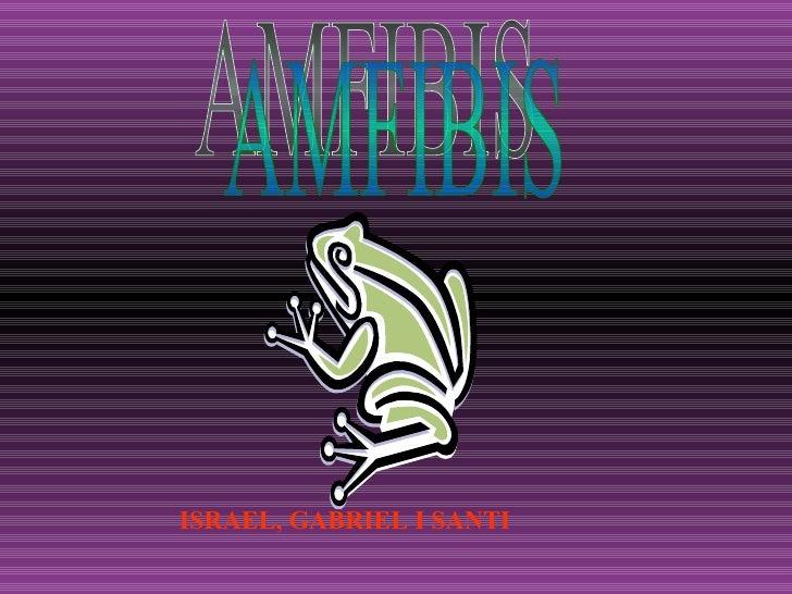 AMFIBIS ISRAEL, GABRIEL I SANTI