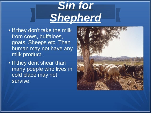 Sin for Shepherd ● If they don't take the milk from cows, buffaloes, goats, Sheeps etc. Than human may not have any milk p...