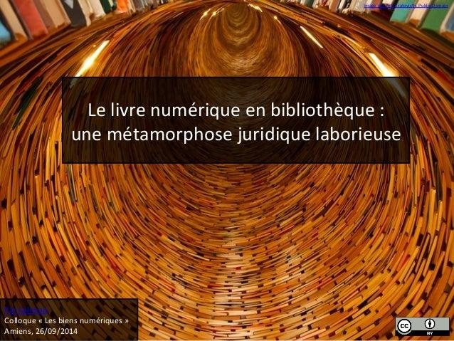 Image  par  Petr  Kratovicth.  Public  Domain  Le  livre  numérique  en  bibliothèque  :  une  métamorphose  juridique  la...