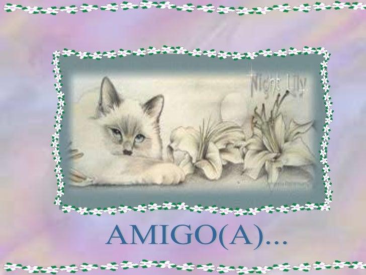 AMIGO(A)...