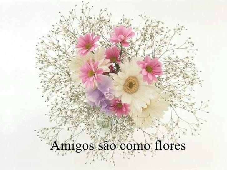 Amigos são como flores