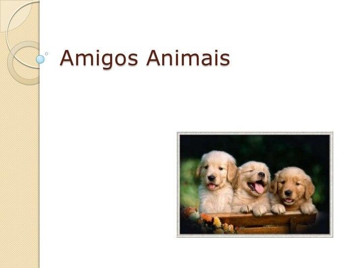 Amigos Animais<br />