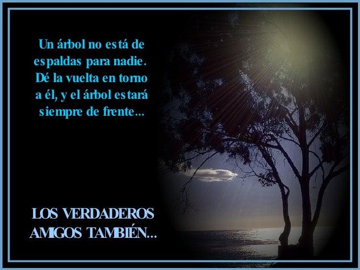 Un árbol no está de espaldas para nadie.  Dé la vuelta en torno a él, y el árbol estará siempre de frente... LOS VERDADERO...