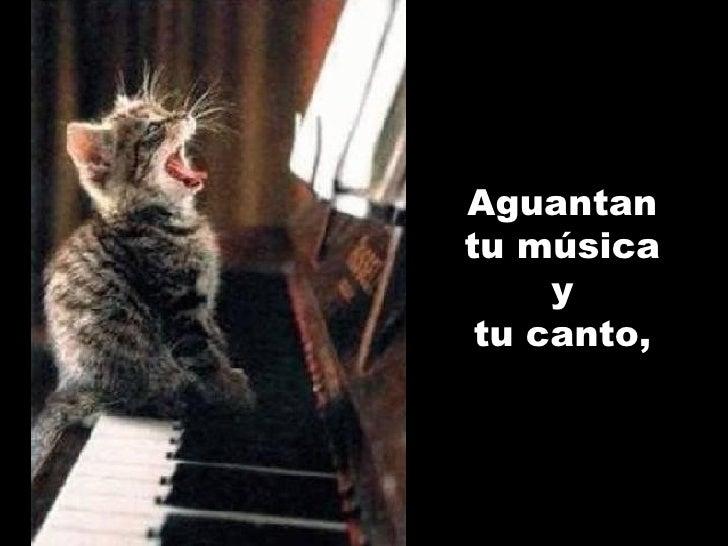 Aguantan tu música y tu canto ,
