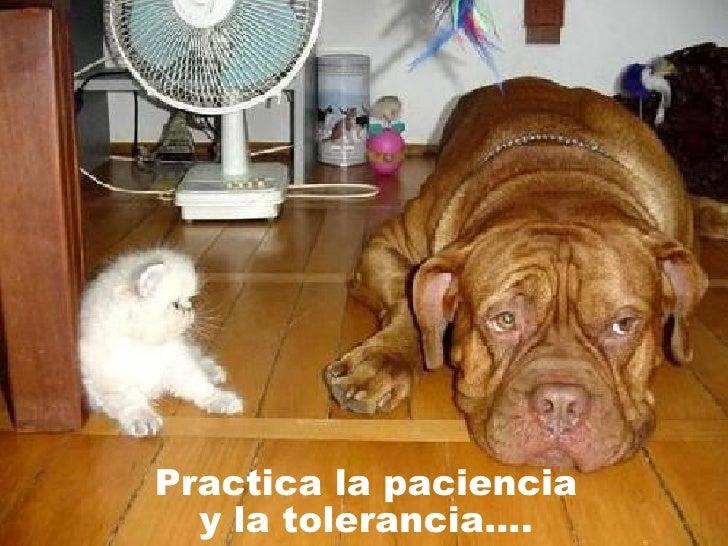 Practica la paciencia y la tolerancia….