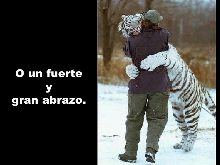 O un fuerte y gran abrazo .
