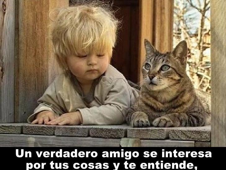 Un verdadero amigo se interesa por tus cosas y te entiende ,