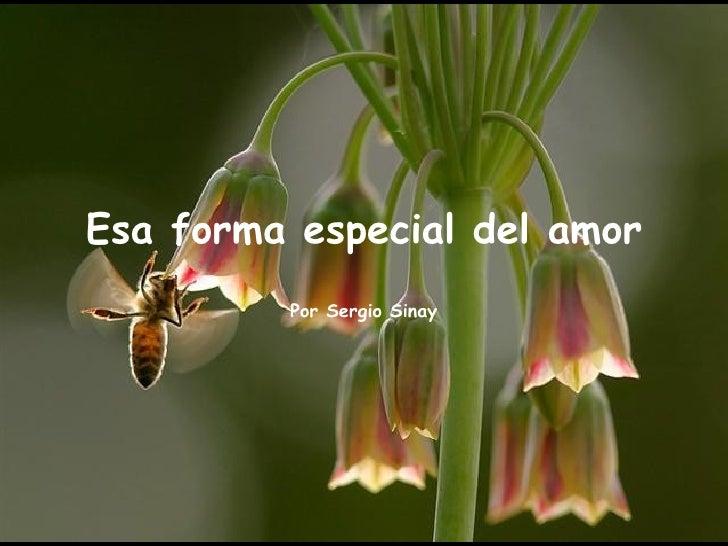 Esa forma especial del amor         Por Sergio Sinay