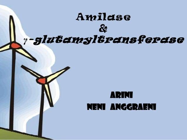 Amilase         &γ -glutamyltransferase             Arini        Neni anggraeni