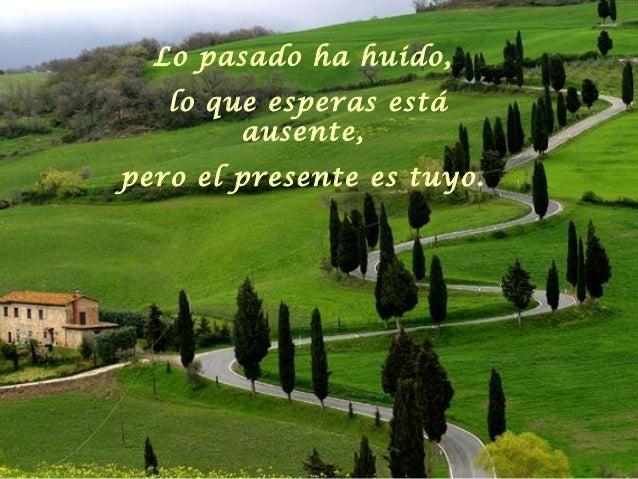 Lo pasado ha huido,   lo que esperas está        ausente,pero el presente es tuyo.