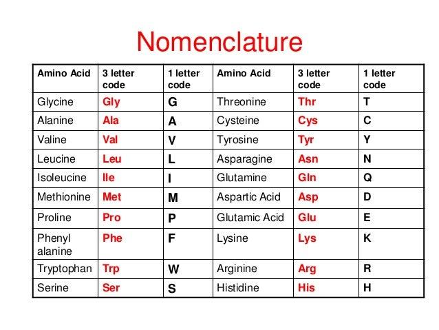 20 Amino Acid One Letter Code.Amino Acid