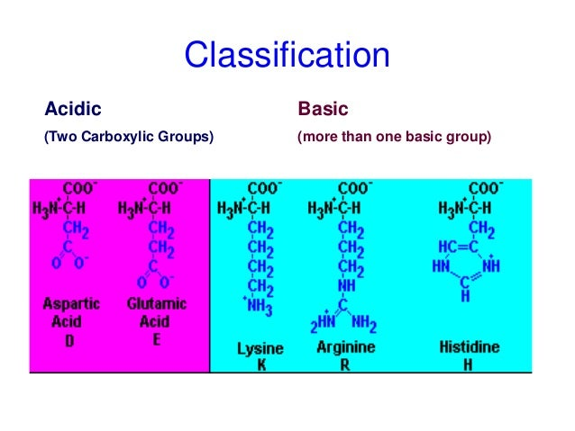 R Glutamic Acid Structure Amino acid