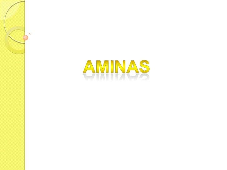 Aminas<br />