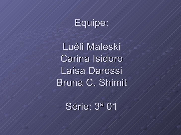 Equipe: Luéli Maleski Carina Isidoro Laísa Darossi Bruna C. Shimit Série: 3ª 01
