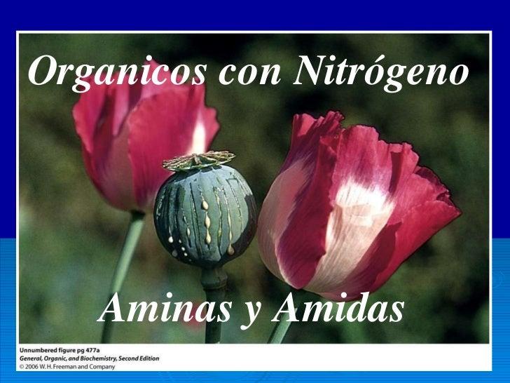 Organicos con Nitrógeno Aminas y Amidas