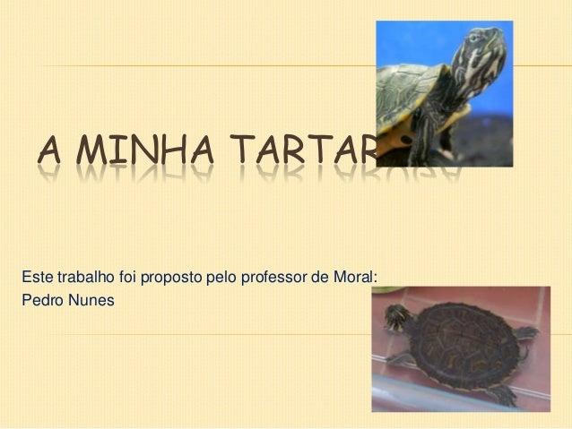 A MINHA TARTARUGA  Este trabalho foi proposto pelo professor de Moral: Pedro Nunes