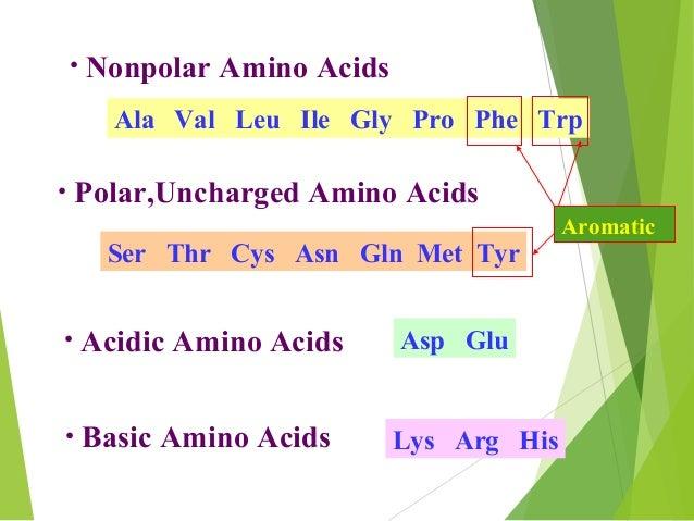 classification of amino acids pdf
