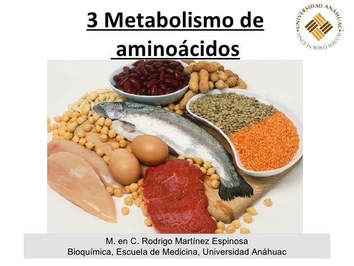 3 Metabolismo de       aminoácidos         M. en C. Rodrigo Martínez EspinosaBioquímica, Escuela de Medicina, Universidad ...