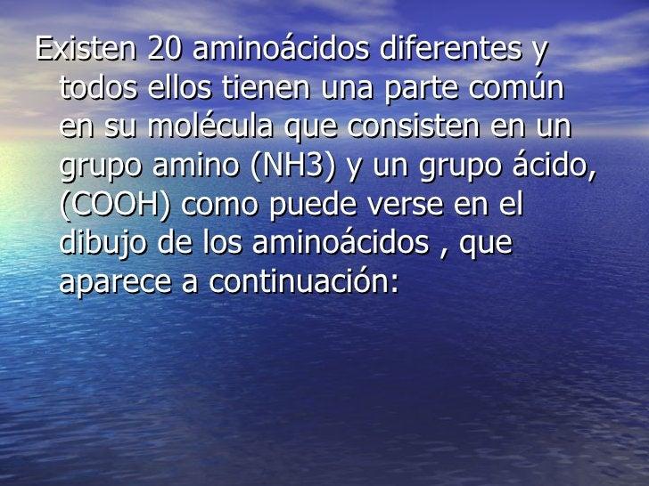 Existen 20 aminoácidos diferentes y todos ellos tienen una parte común en su molécula que consisten en un grupo amino (NH3...