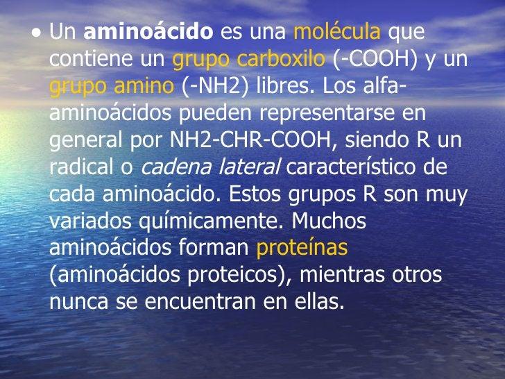 • Un aminoácido es una molécula que contiene un grupo carboxilo (-COOH) y un grupo amino (-NH2) libres. Los alfa- aminoáci...