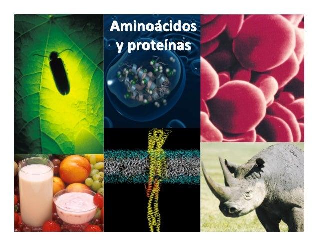 Aminoácidos yproteínas