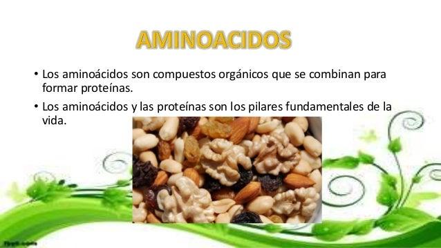 • Los aminoácidos son compuestos orgánicos que se combinan para formar proteínas. • Los aminoácidos y las proteínas son lo...