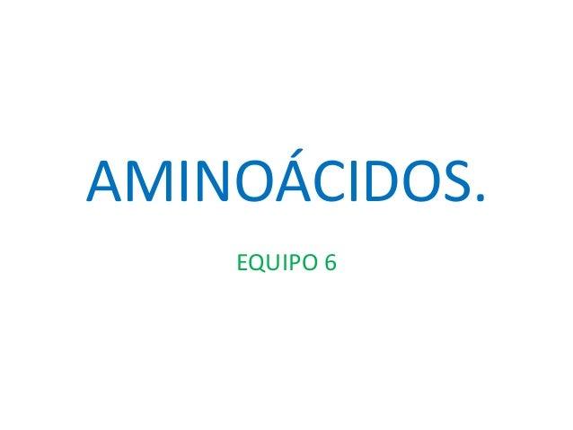AMINOÁCIDOS. EQUIPO 6
