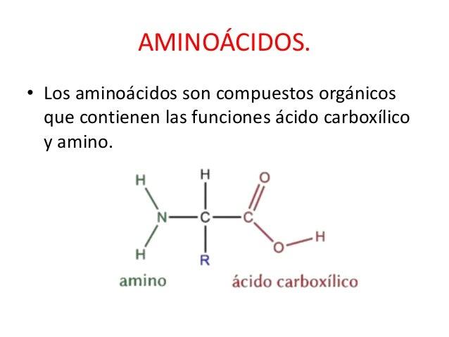 Aminoacidos Slide 2