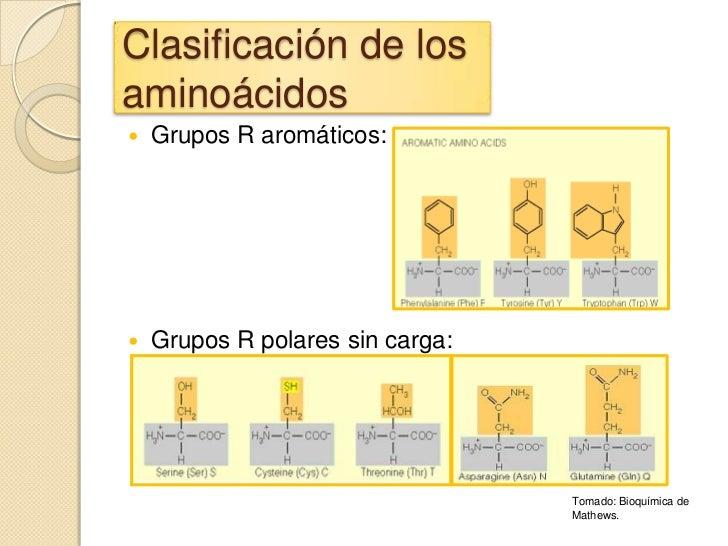 Clasificación de losaminoácidos   Grupos R aromáticos:   Grupos R polares sin carga:                                  To...