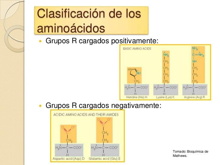 Clasificación de losaminoácidos   Grupos R cargados positivamente:   Grupos R cargados negativamente:                   ...