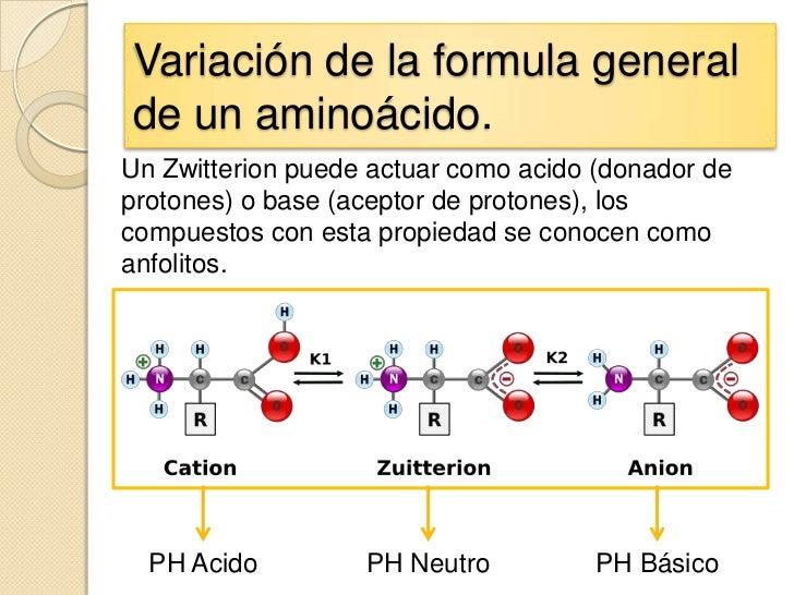 Variación de la formula generalde un aminoácido.Un Zwitterion puede actuar como acido (donador deprotones) o base (aceptor...