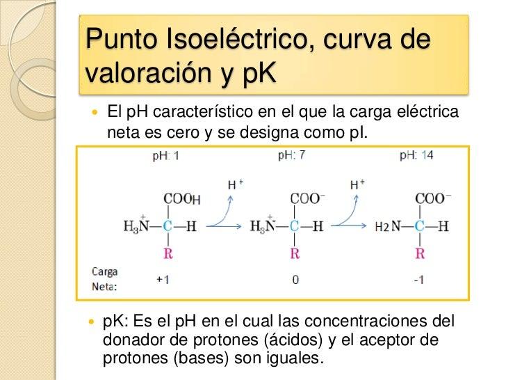 Punto Isoeléctrico, curva devaloración y pK   El pH característico en el que la carga eléctrica    neta es cero y se desi...